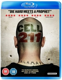 Cell 211 - 1