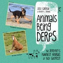 Animals Being Derps Square 2022 Calendar - 1