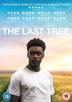 The Last Tree - 1