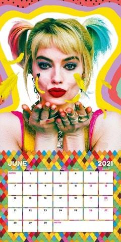 Birds Of Prey: Square 2021 Calendar - 2