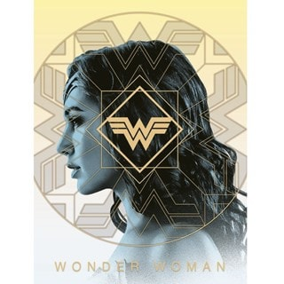 Wonder Woman 1984:  Amazonian Pride Canvas Print