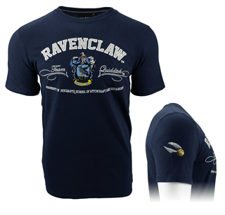Harry Potter: Ravenclaw Quidditch