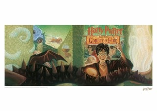 Harry Potter: Goblet Of Fire Book Cover Art Print
