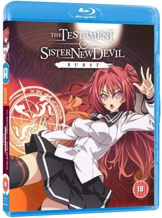 The Testament of Sister New Devil: Burst