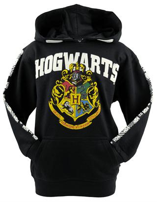 Harry Potter: Hogwarts (Kids Hoodie)