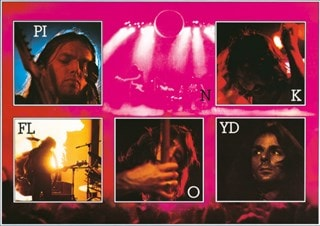 Pink Floyd: Live Canvas Print