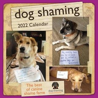 Dog Shaming Square 2022 Calendar
