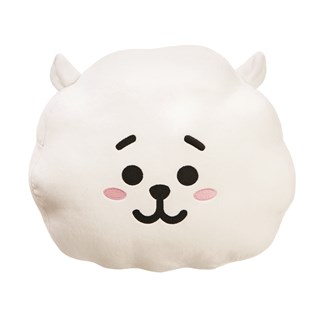 RJ: BT21 Plush Cushion