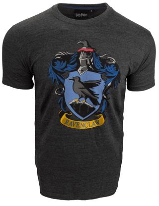 Harry Potter Ravenclaw