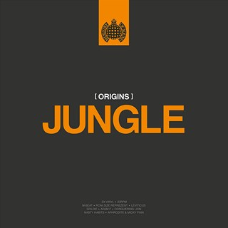 Origins of Jungle