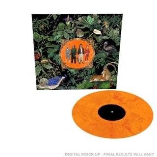 Amazing Things Limited Edition Orange Marble Vinyl
