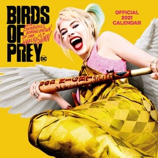 Birds Of Prey: Square 2021 Calendar