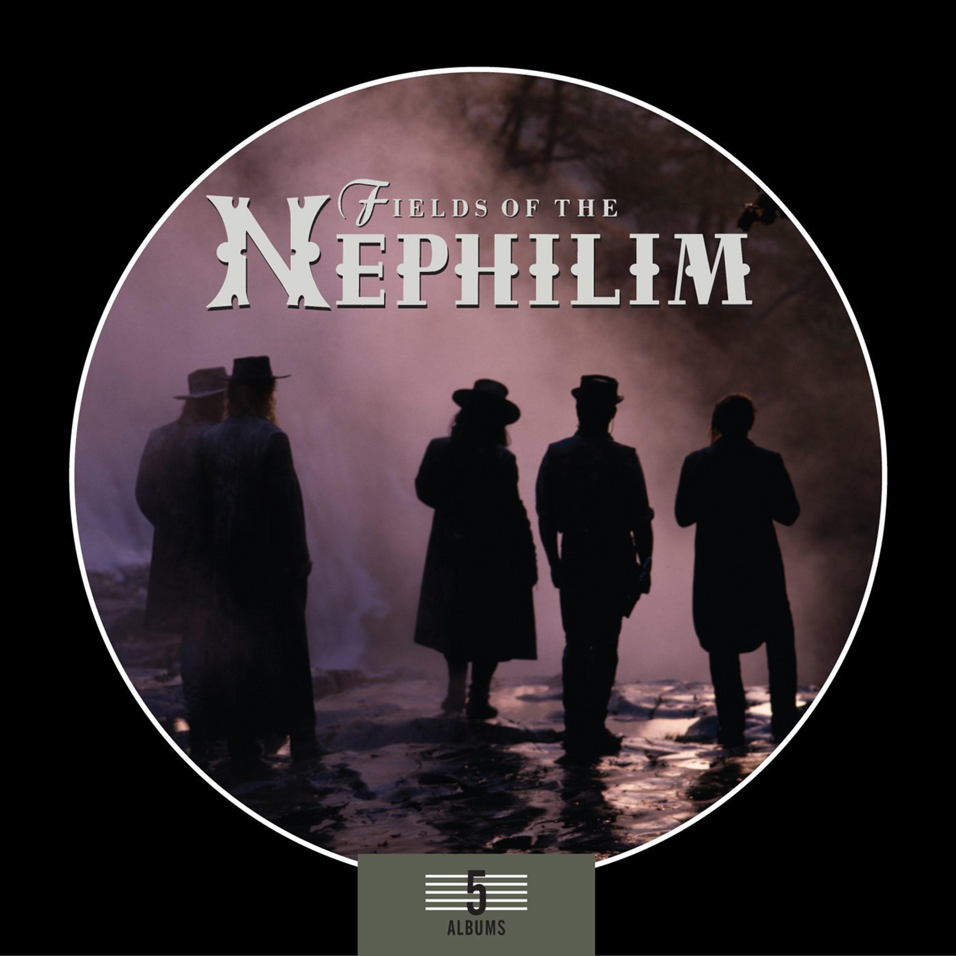 5 Album Box Set - 1