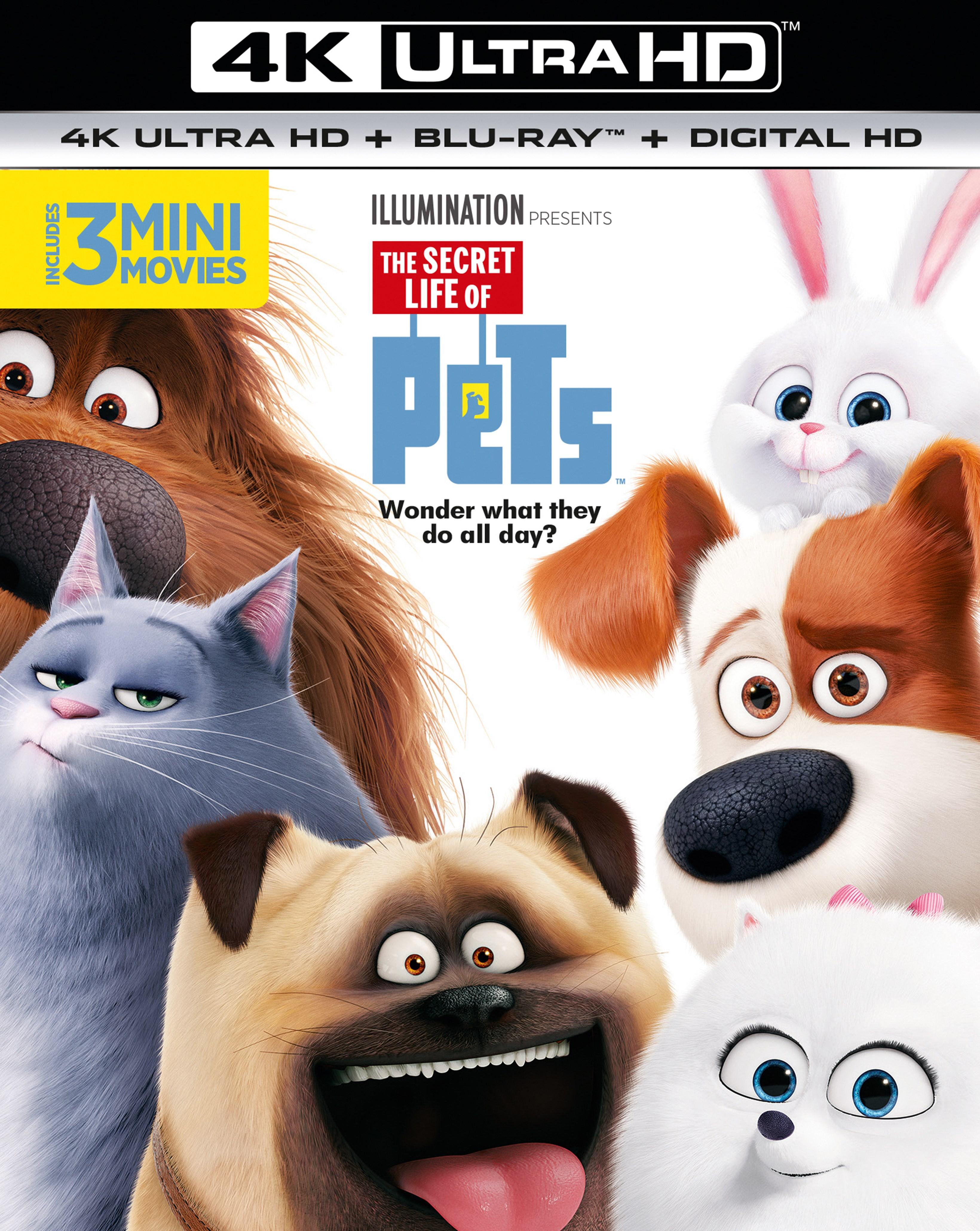 The Secret Life of Pets - 1