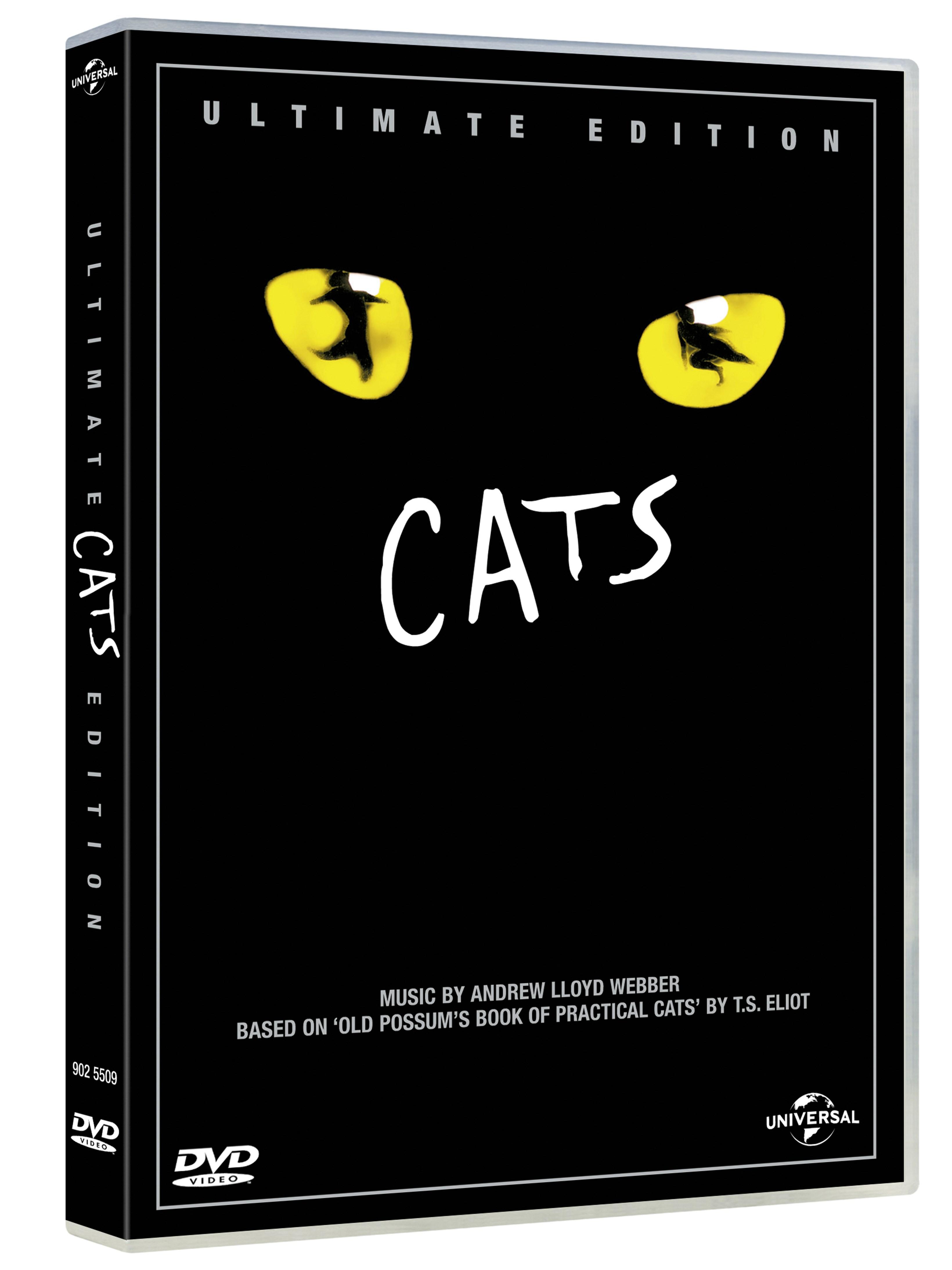 Cats - 2