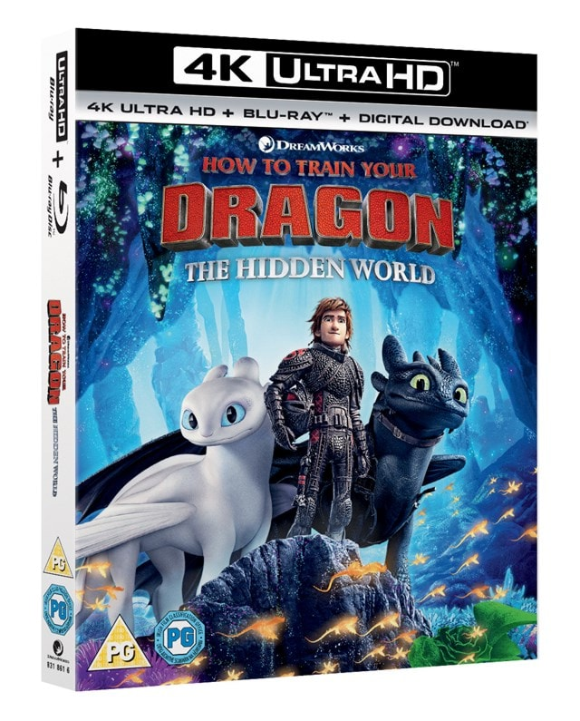 How to Train Your Dragon - The Hidden World - 2