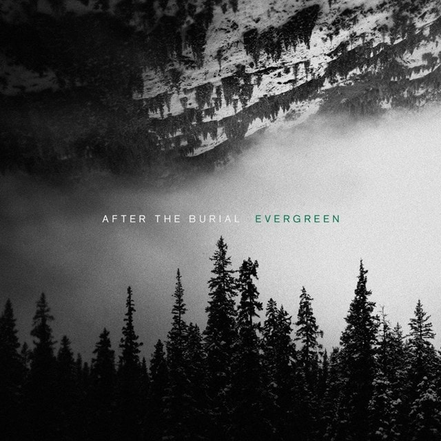 Evergreen - 1