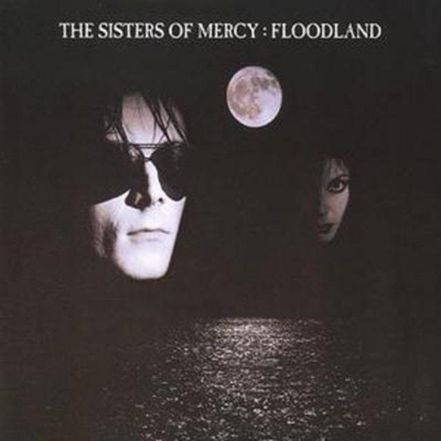 Floodland - 1