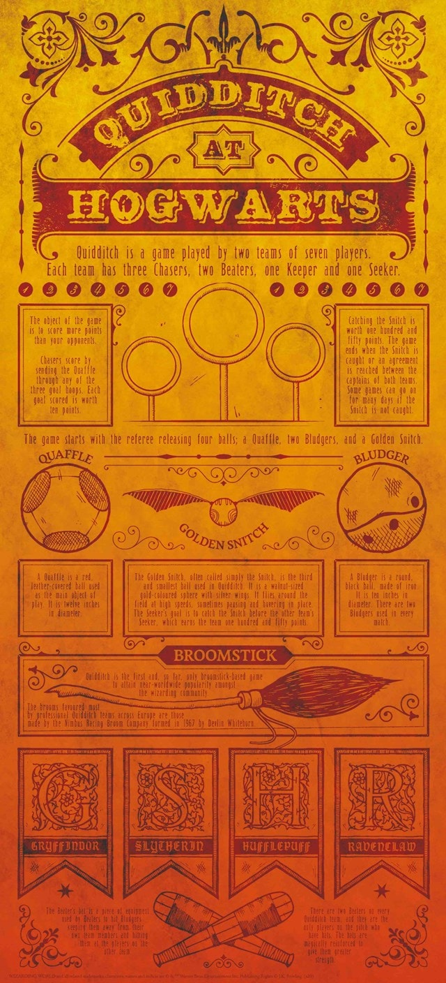 Harry Potter: Quidditch Limited Edition Art Print - 1