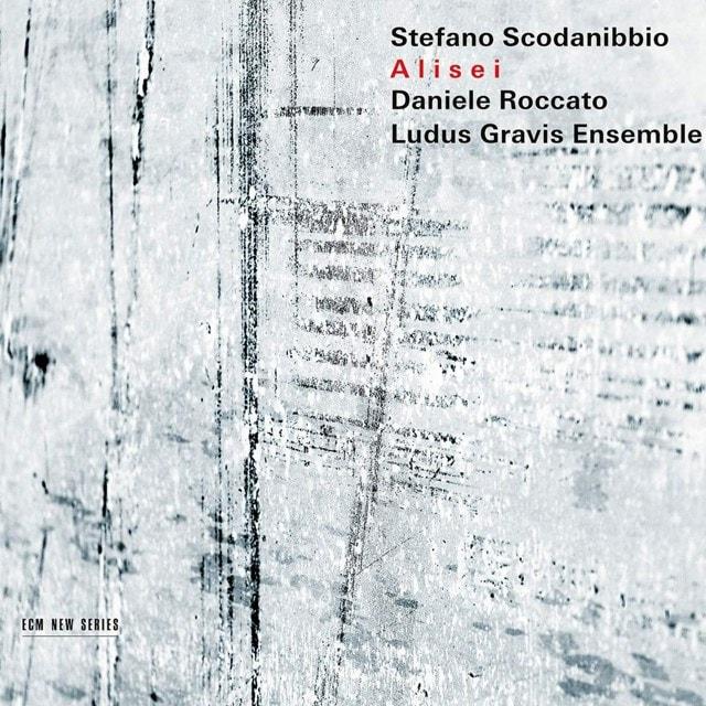 Stefano Scodanibbio: Alisei - 1
