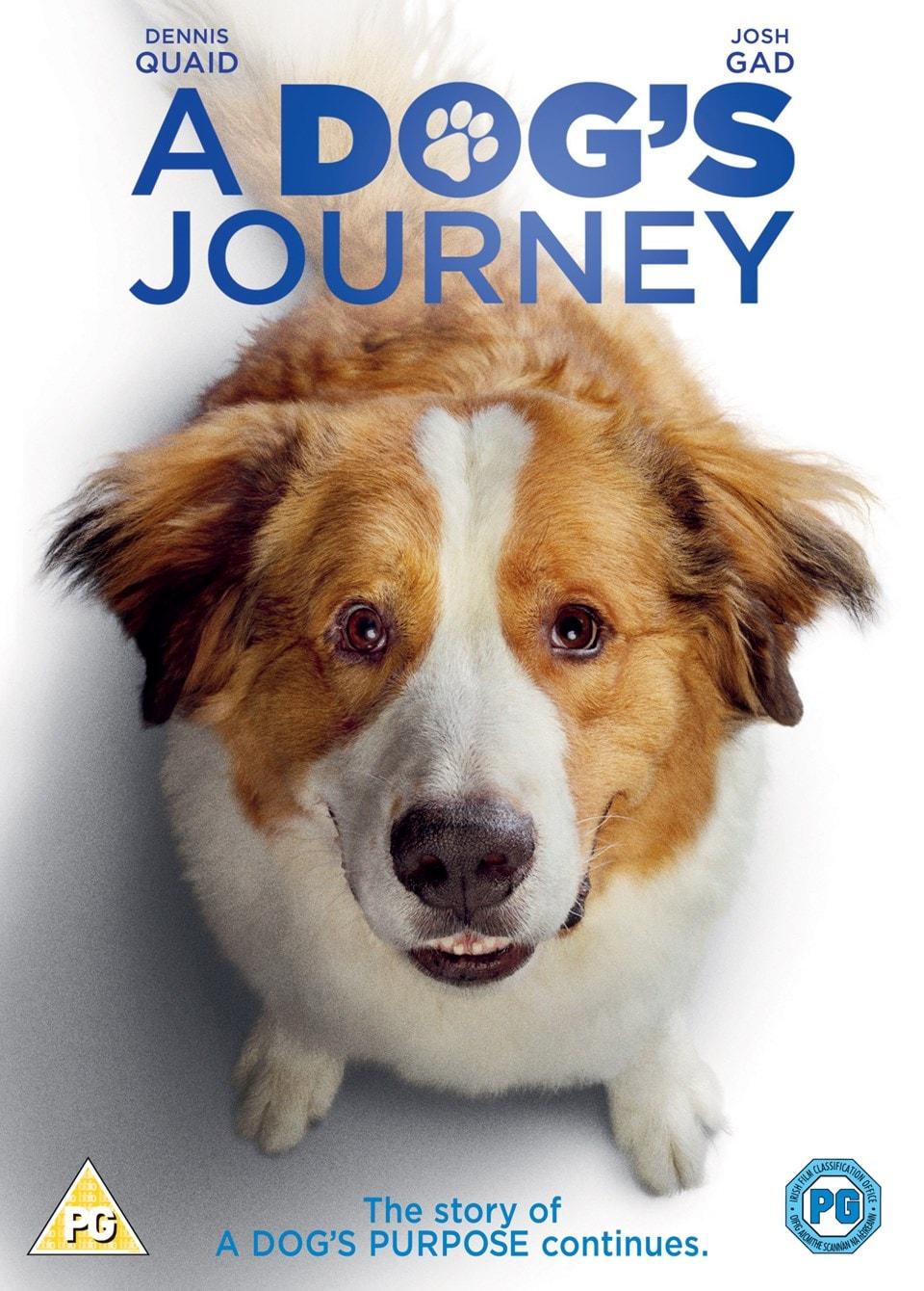 A Dog's Journey - 1